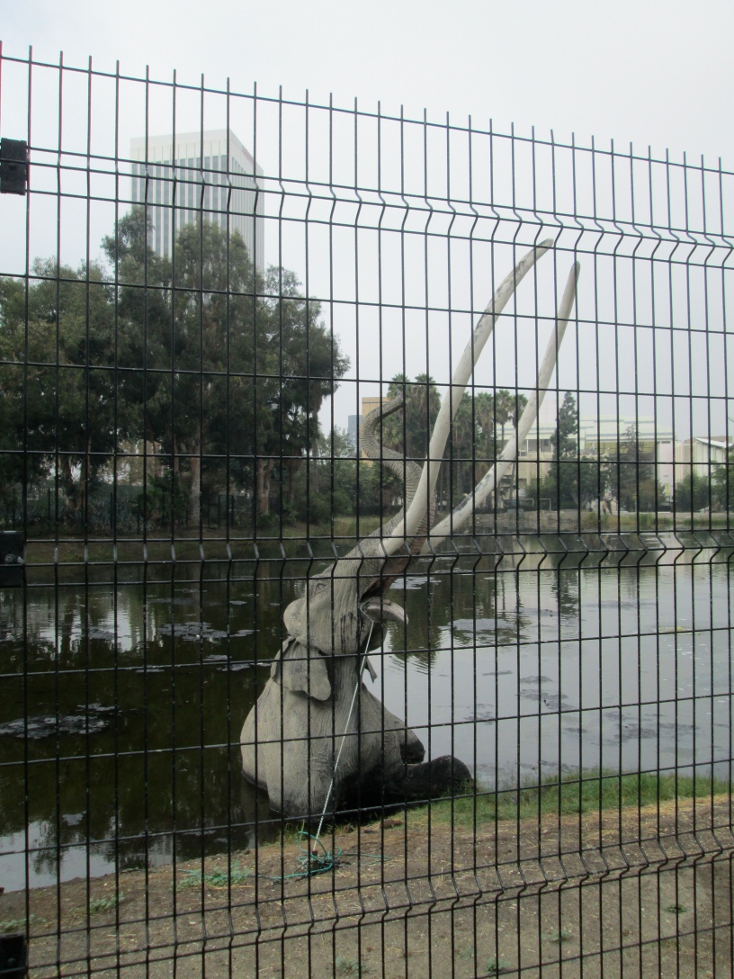 fence meaning. Brilliant Fence Fence Meaning Cement Elephants And The Meaning Of Life D For Fence Meaning
